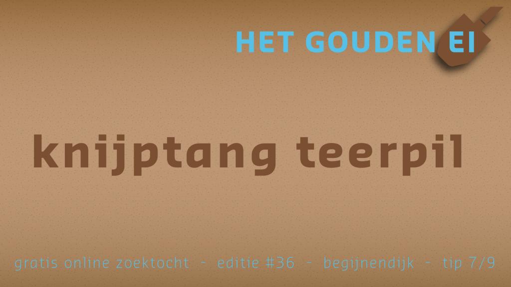 Tip 7 van Het Gouden Ei van Begijnendijk